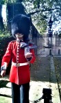 typical british guard